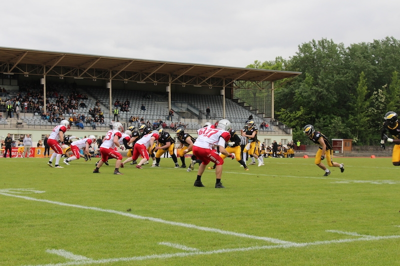 Berlin Adler gegen Cottbus Crayfish 25.5.19 - 17