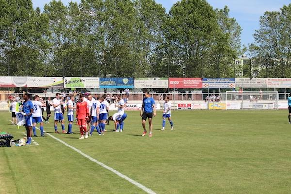 30. Spieltag 2018/ 2019 - Luckenwalde gegen Hohenstein Ernstthal - 3