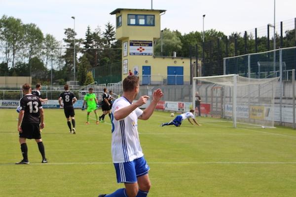 30. Spieltag 2018/ 2019 - Luckenwalde gegen Hohenstein Ernstthal - 20