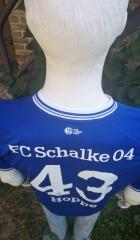 Schalke-blau-4